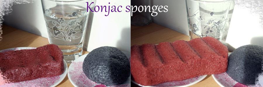 konjac-sponges-dry-and-wet