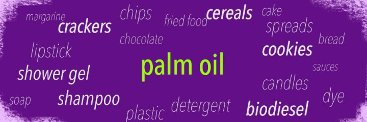 Palm oil RSPO failure and incredibily vast use of palm oil in packaged goods