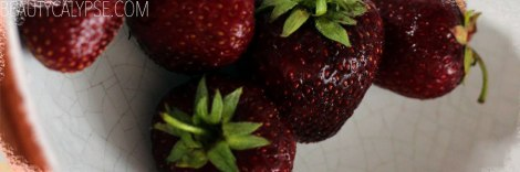 berry-love-late-strawberries