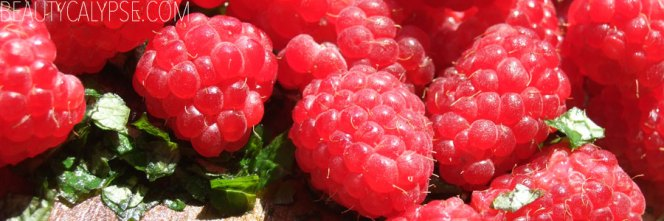 berrylove-raspberries3