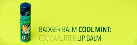 badger-balm-mint-lip-balm