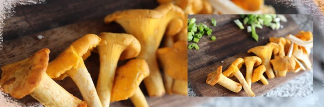 making-chanterelles-pizza