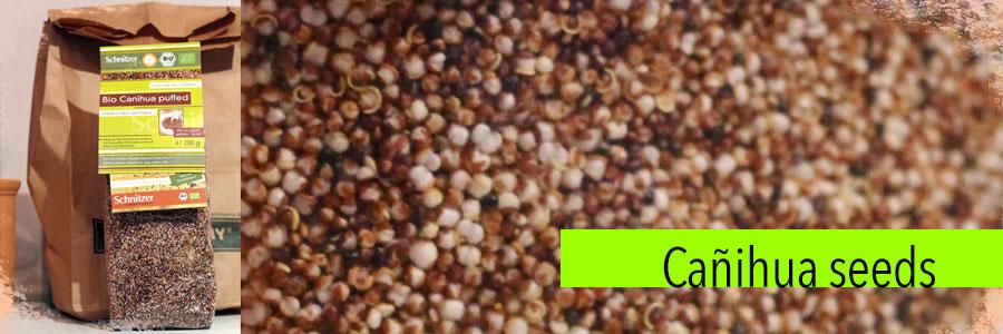 canihua-seeds