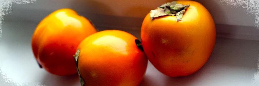persimmon-berries