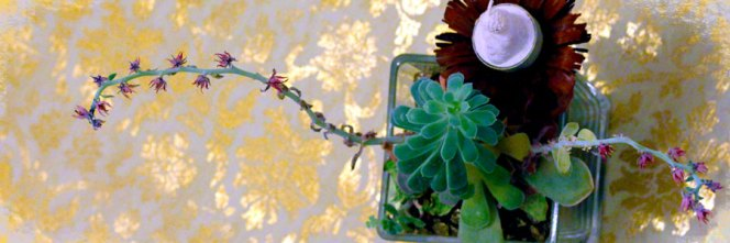 by-botanic-art
