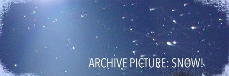 snow-archive
