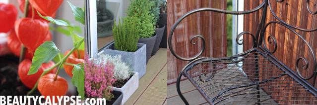 my-rooftop-terrace