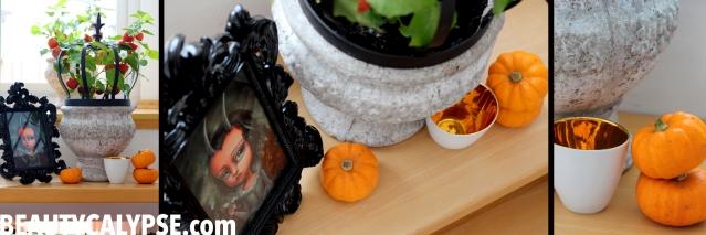 HalloweenDecorationsMabGravesPhysalisMiniPumpkins