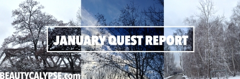 January-Quest-Report