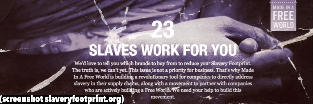 slaveryfootprint-org_survey