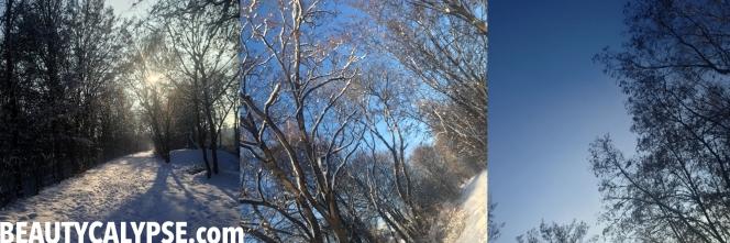 winter-2014-berlin