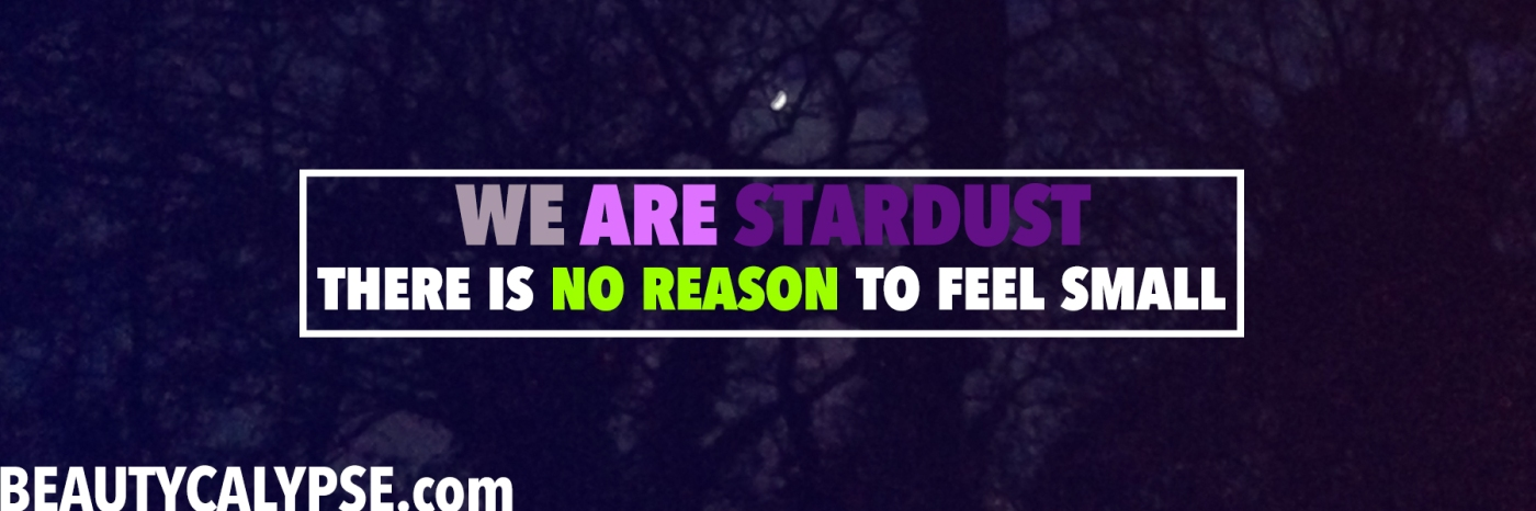 we-are-stardust