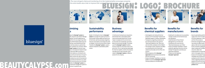 bluesign-logo-and-brochure