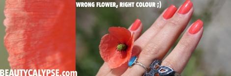 Korres-Hibiscus-Snapshot-Sunlight-Vosges