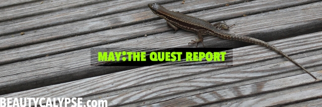 May-2015-Quest-Report