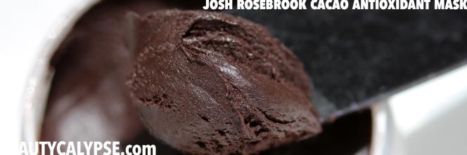 Cacao-Antioxidant-Mask-Josh-Rosebrook-Texture
