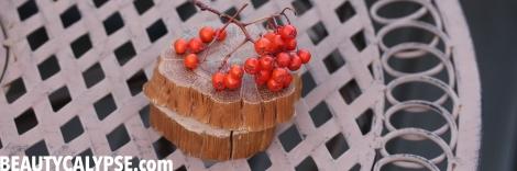 rowan-berry-in-season