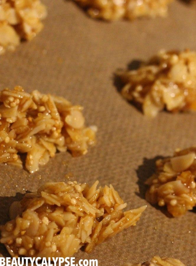 baking-florentines-coconut-caramel