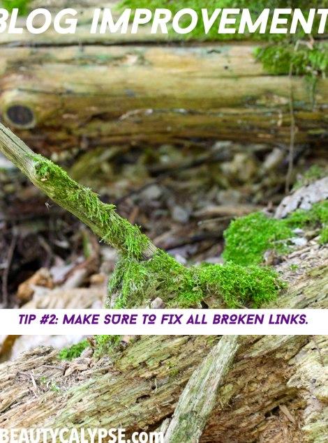 blog-improvement-fix-broken-links