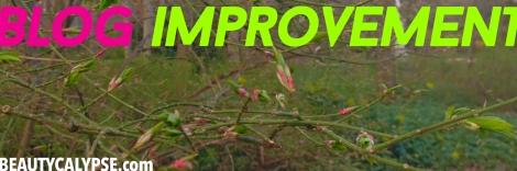 blog-improvement-tips