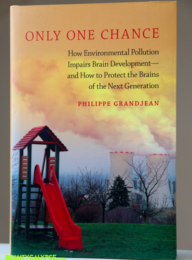 only-one-chance-book-review