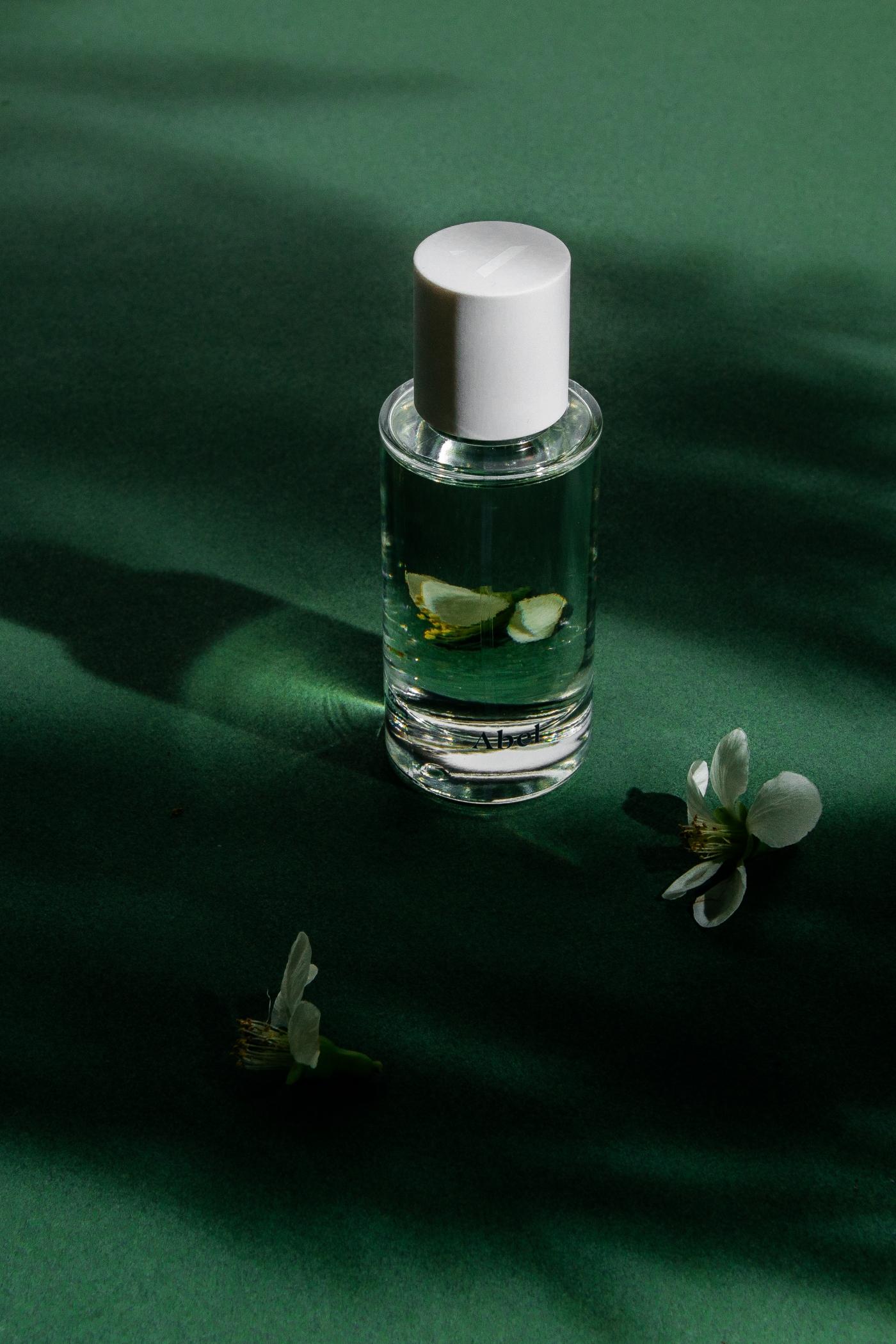 Abel, Green Cedar review