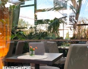 Biosphäre Potsdam impressions: Urwaldblick restaurant