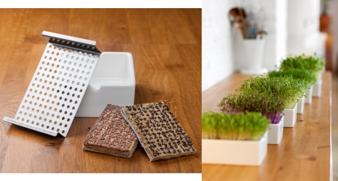 Heimgart microgreens starter kit: organic, ethical, eco-friendly