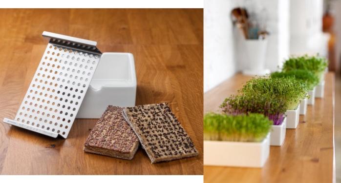 Heimgart microgreens starter kit: organic, ethical, eco-friendly